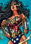 DC Comics: The Women of Legend by Chris Meeks